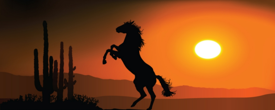 Western, Horse, Pictures