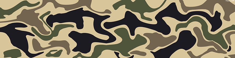 Camo See Thru Graphics
