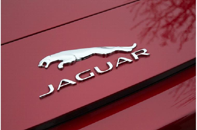 jaguar-chrome-emblem.jpg